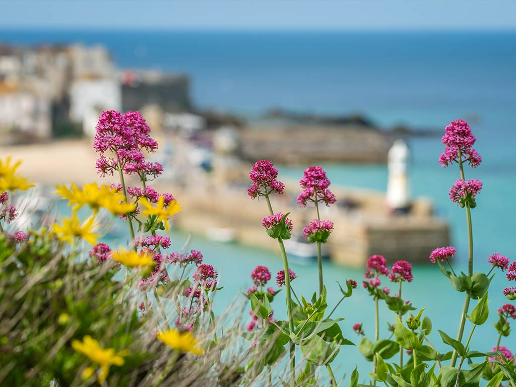 VAT rates reduced for Cornwall Tourism